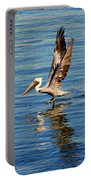 Happy Landing Pelican Portable Battery Charger