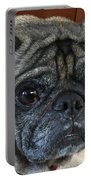 Happy Pug Portable Battery Charger