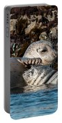 Harbor Seal And Pup Portable Battery Charger