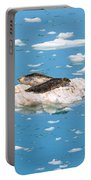 Harbor Seals On Clouds Of Ice Portable Battery Charger