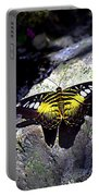 Hard Landing--clipper Butterfly Portable Battery Charger