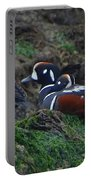Harlequin Ducks  Portable Battery Charger