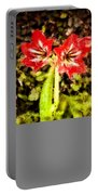 Havana Amaryllis Portable Battery Charger