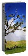 Hawaii Koa Tree Portable Battery Charger