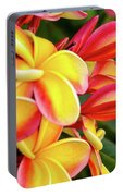 Hawaii Plumeria Flowers In Bloom Portable Battery Charger