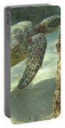 Hawaiian Green Sea Turtle Portable Battery Charger