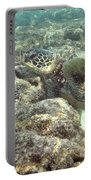 Hawaiian Green Turtle Portable Battery Charger