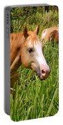 Hawaiian Horses In Sugar Cane Portable Battery Charger