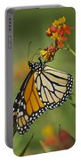 Hawaiian Monarch 2 Portable Battery Charger