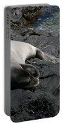 Hawaiian Monk Seal Ilio Holo I Ka Uana Portable Battery Charger