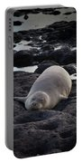 Hawaiian Monk Seal Portable Battery Charger