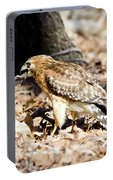 Hawk And Gecko Portable Battery Charger