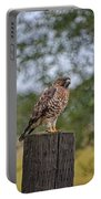 Hawk On A Fence Post Portable Battery Charger
