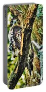 Hawk On Blue Hole Road Portable Battery Charger