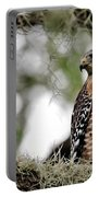 Hawk On Watch Portable Battery Charger