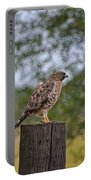 Hawk Profile Portable Battery Charger