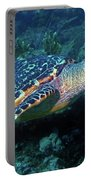 Hawksbill Sea Turtle 3 Portable Battery Charger