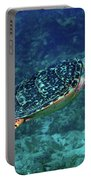 Hawksbill Sea Turtle 5 Portable Battery Charger