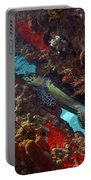 Hawksbill Sea Turtle 9 Portable Battery Charger