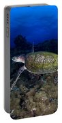 Hawksbill Turtle Swimming With Diver Portable Battery Charger