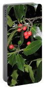Hawthorn Portable Battery Charger