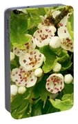 Hawthorn Gold Portable Battery Charger