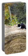 Hay Kitty Portable Battery Charger
