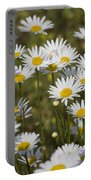 He Loves Me Daisies Portable Battery Charger