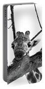 Head In The Trees Portable Battery Charger
