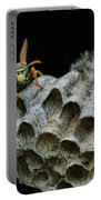 Head-on - Paper Wasp - Nest Portable Battery Charger