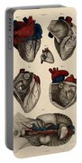 Heart, Anatomical Illustration, 1822 Portable Battery Charger