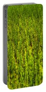 Heather Lake Grass 2 Portable Battery Charger
