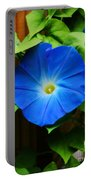 Heavenly Blue Portable Battery Charger