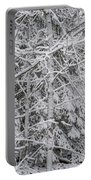 Heavy Snow Portable Battery Charger