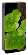 Hedera Portable Battery Charger