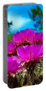 Hedgehog Cactus Portable Battery Charger