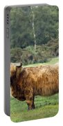 Heilan Coo Portable Battery Charger