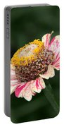 Helenium Portable Battery Charger