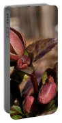 Heliborus Early Flower Buds 2 Portable Battery Charger