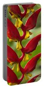Heliconia Dielsiana Portable Battery Charger