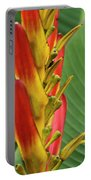 Heliconia Portable Battery Charger