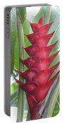 Heliconia Hot Flash Portable Battery Charger