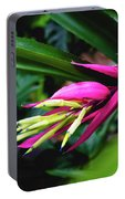 Heliconia Subulata - Wild Plant Series Portable Battery Charger