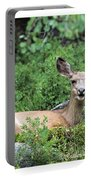 Hello From A Deer Portable Battery Charger