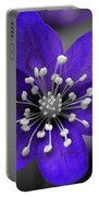 Hepatica 3 Portable Battery Charger