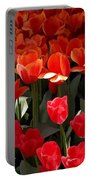 Heralds Of Spring Portable Battery Charger