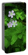 Herb Robert On The Ma At Portable Battery Charger
