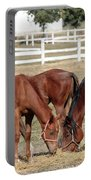 Herd Of Horses Ranch Scene Portable Battery Charger