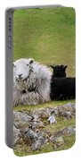 Herdwick Sheep On A Hillside In Cumbria Portable Battery Charger
