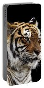 Here Kitty... Portable Battery Charger